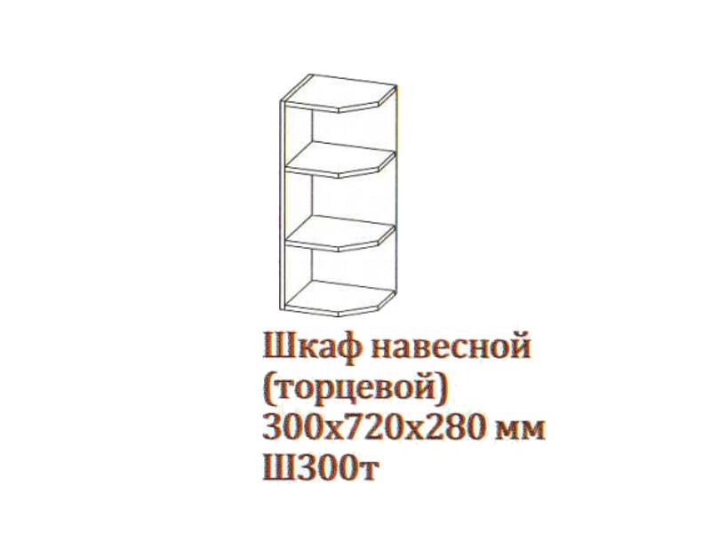"Шкаф навесной 300-720 торцевой Ш300т-720 300х720х280 Серый  </div><font class=""price-kupimenya"">Цена 987</font><input onclick=""product_add(29)"" type=""submit"" title=""Купить"" value=""Купить"" class=""buykupit"">"